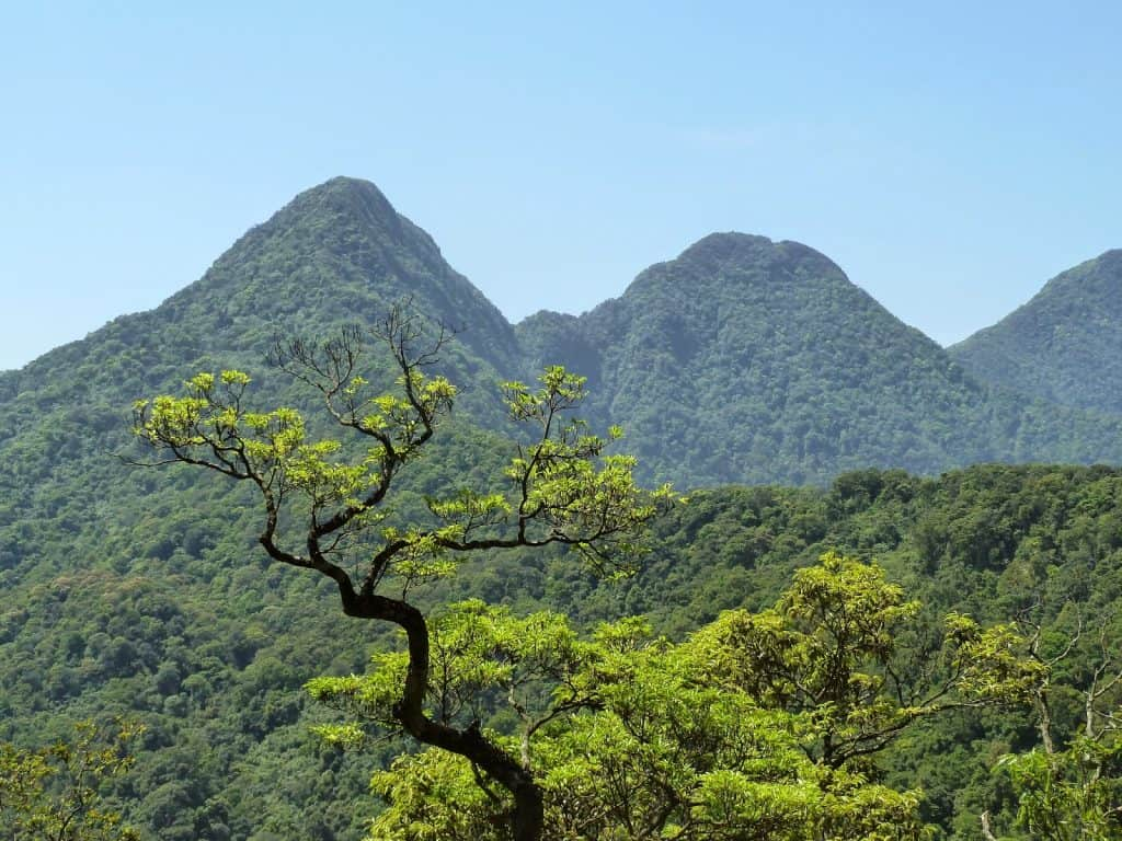 Tam Dao National Park, Hanoi day trips, Vietnam